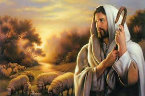 Đức Giê-hô-va là Đấng chăn giữ tôi